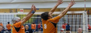 recreatievolleybal in Nederland